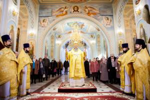 Божественная литургия. Волгодонск. 22.02.2015 г.