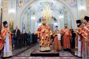 Божественная литургия. Волгодонск. 8.02.2015 г.