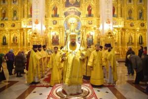 Божественная Литургия. Волгодонск. 15.11.2015 г.