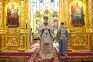 Божественная Литургия. Волгодонск. 22.11.2015 г.