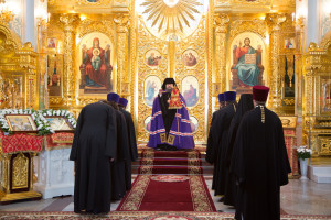 22 мая 2016 г. Божественная литургия г.Волгодонска.