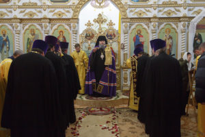 19.12.2018г. Божественная литургия ст. Егорлыкская.