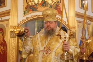 2.12.2018г. Божественная литургия с.Заветное.